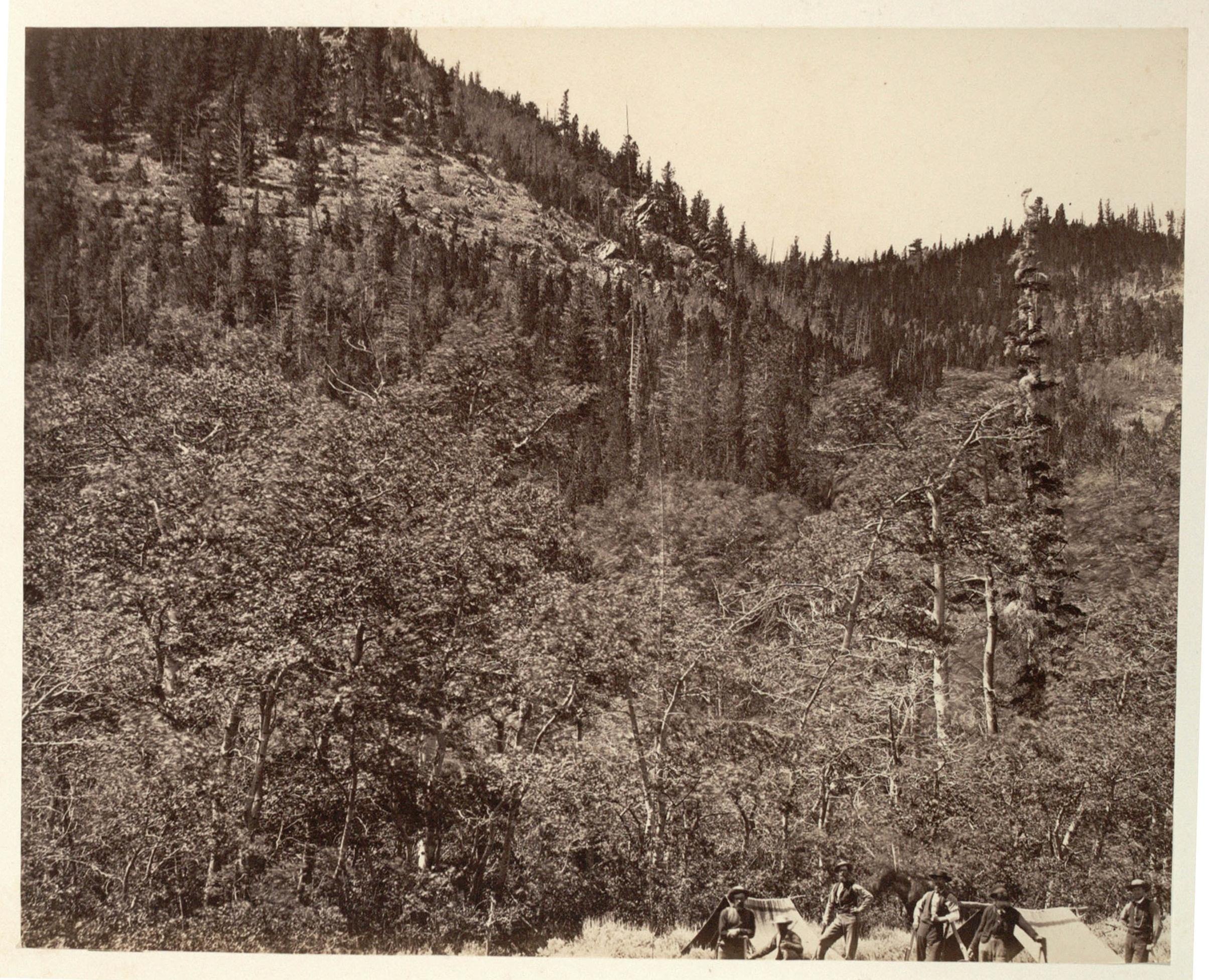 transcontinental railroad essay