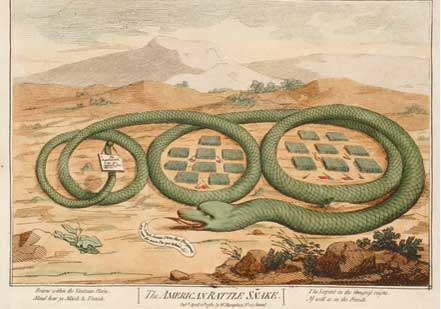 The American Rattle Snake, 1782 (New-York Historical Society)