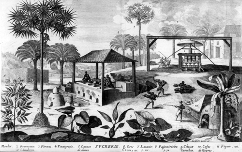 Manufacture of Sugar, Histoire Generale des Antilles, 1667 (Library of Congress,  LC-USZ62-72098)