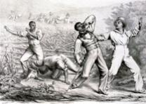 Effects of the Fugitive-Slave-Lawm Hoff & Bloede, 1850