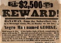 """$2,500 Reward!,"" Mississippi Co., Missouri, broadside, August 23, 1852. (Gi"