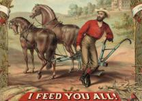 agrarian discontent 1880 1900 Essay why the farmers were wrong the period between 1880 and 1900 was a boom time for american politics the country was for once free of the threat of war, and many of its citizens were living comfortably.