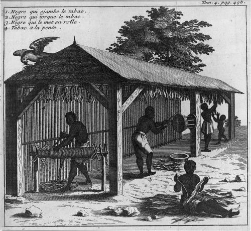 slave essay