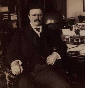 Theodore Roosevelt at his desk in the White House, 1902. (Gilder Lehrman Coll.)