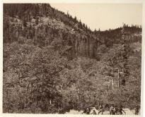 """Among the Timber, at Head of Little Laramie River."" (Gilder Lehrman Collection)"