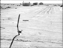 Abandoned farm in the Dust Bowl, Coldwater District, near Dalhart Texas, photogr