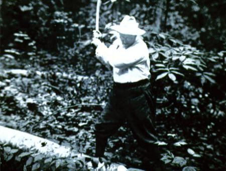 Theodore Roosevelt chopping wood at Sagamore Hill, c.1905.